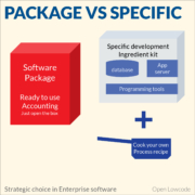 Package vs Specific strategic choice